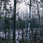 Saskatchewan Prairie - Robert Charles by RobertCharles