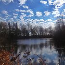 Saskatchewan - Pond by RobertCharles