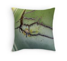 Succulent Abstract Throw Pillow