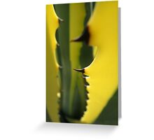 Succulent Thorns Greeting Card