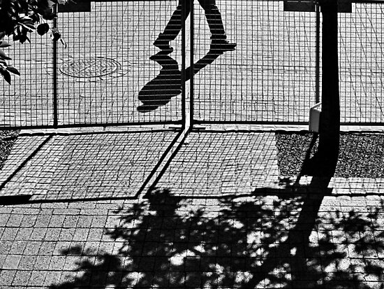 Fenced out by awefaul