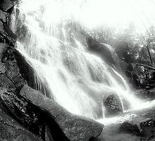 Toronga Falls... by JAZ art