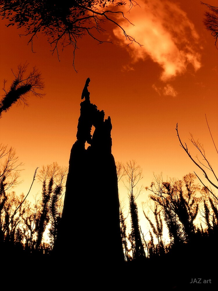 The Black Stump... by JAZ art