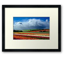 Paintbox Framed Print