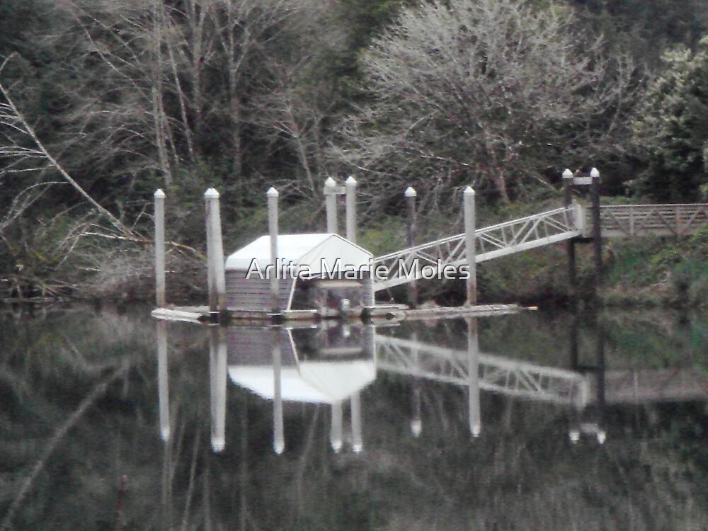 Siuslaw River 1 by Arlita Marie Moles