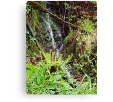 Scenic 1 Canvas Print