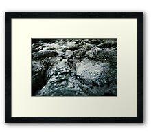 Microchasm v2 Framed Print
