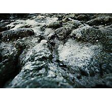 Microchasm v2 Photographic Print