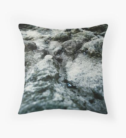 Microchasm v2 Throw Pillow