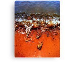 Shore flow... Canvas Print