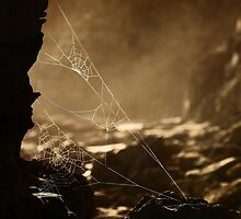 Webs v1 by Pirostitch