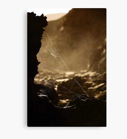 Webs v1 Canvas Print
