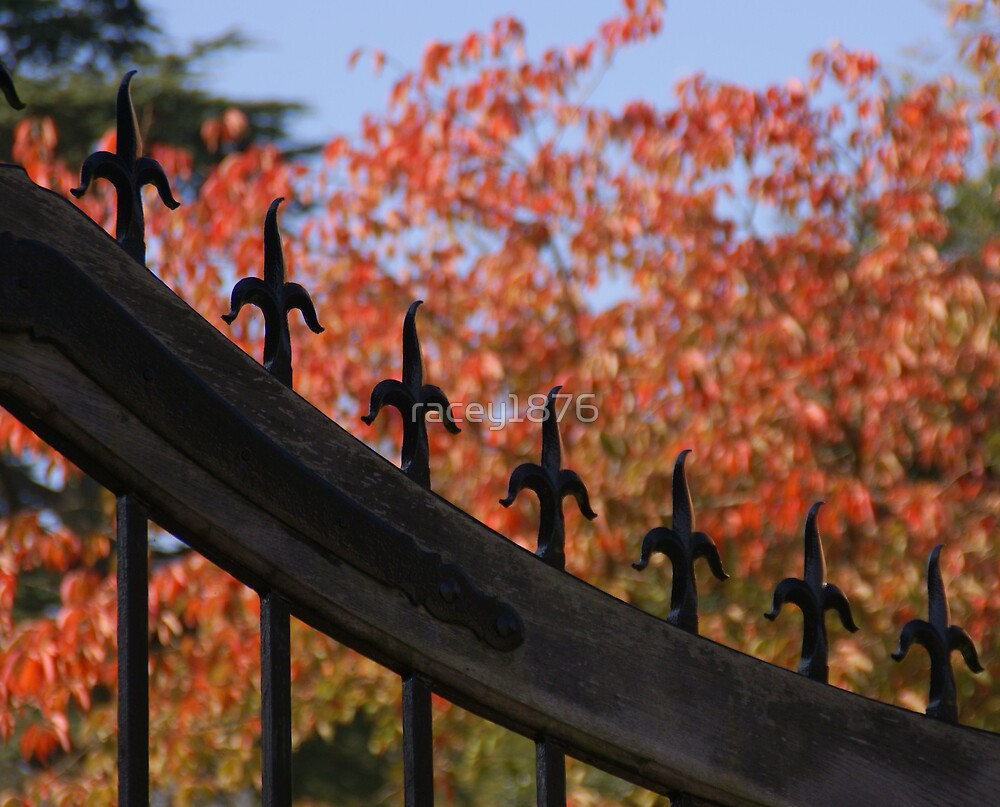 gate by racey1876