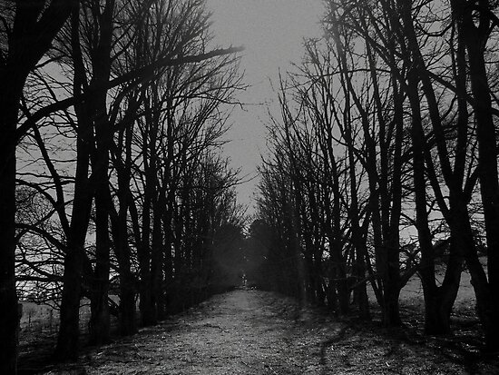 The Shortcut by Kitsmumma