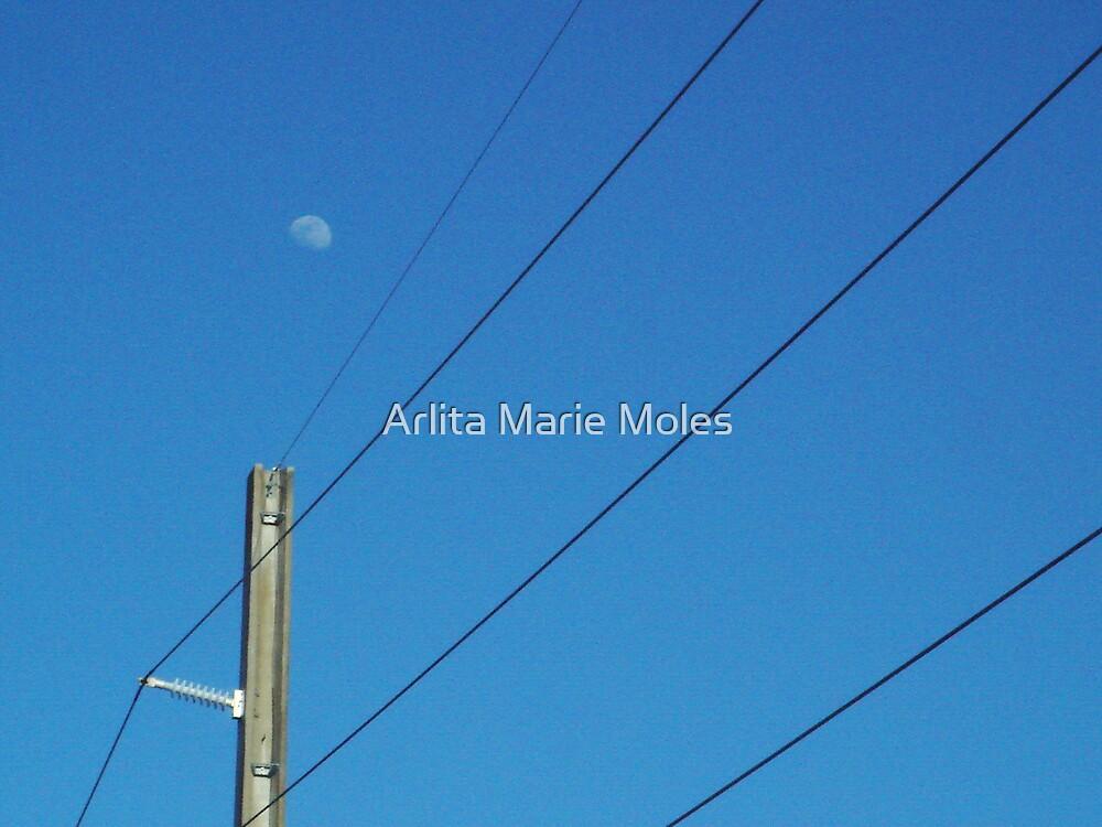 Moon by Arlita Marie Moles