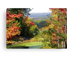 Autumn Begins Canvas Print
