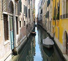 Venezia by Anne McGrath