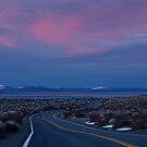 Lonely Highway by Barbara  Brown