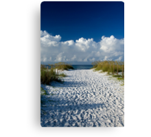 Pathway to Heaven Canvas Print