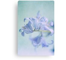 Bluebell Curl Canvas Print