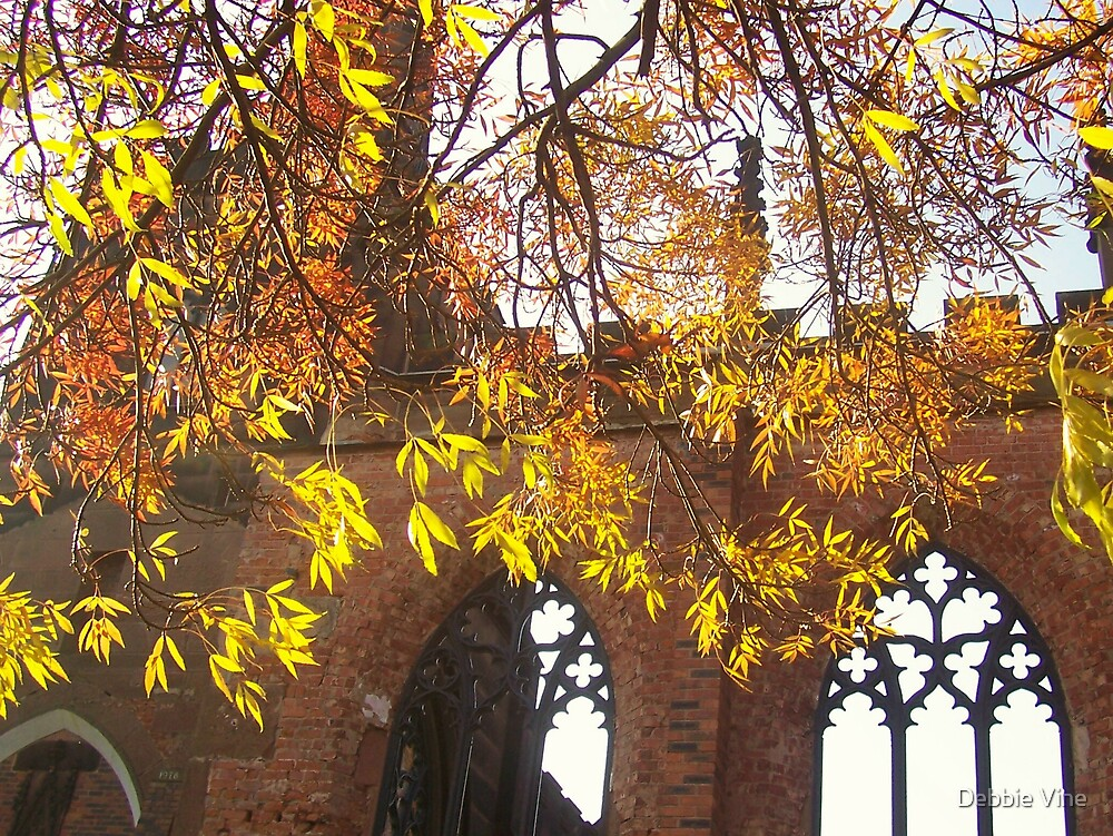 Autumnal Curtain by Debbie Vine