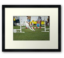 Sully Agility Framed Print