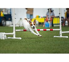 Sully Agility Photographic Print