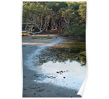 Nudgee Mudflats Poster