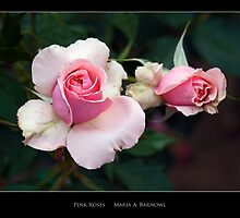 Pink Roses - Cool Stuff by Maria A. Barnowl
