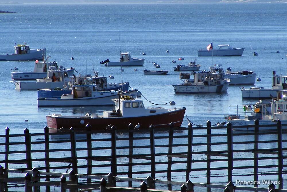 Harbor View by Rebecca Brann