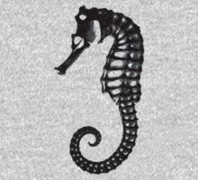 hippocampus by tashland