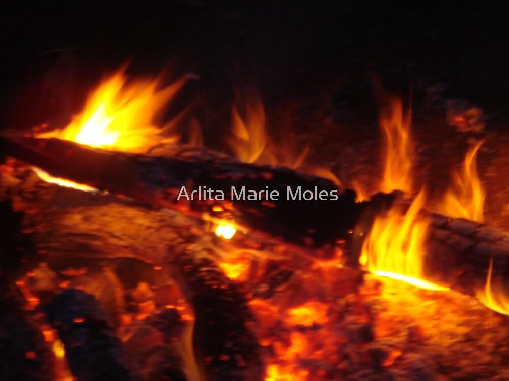 Flames by Arlita Marie Moles