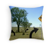 bendy arrows in the paddock Throw Pillow