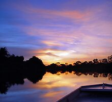 Pantanal Sunset 2 by kuntaldaftary