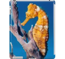 Outlook iPad Case/Skin