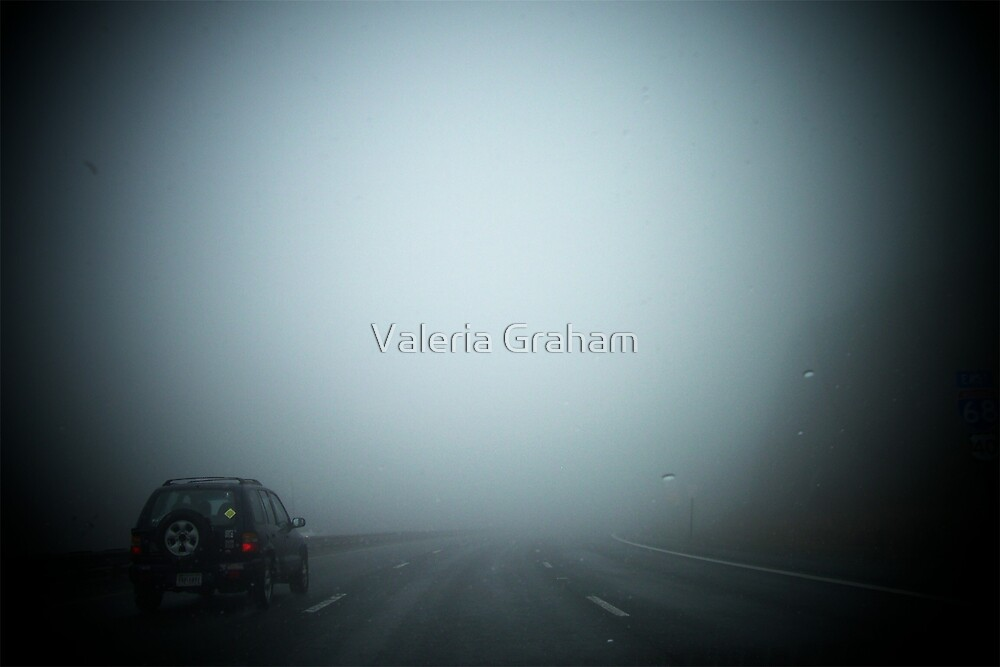 Fog ahead by Valeria Lee