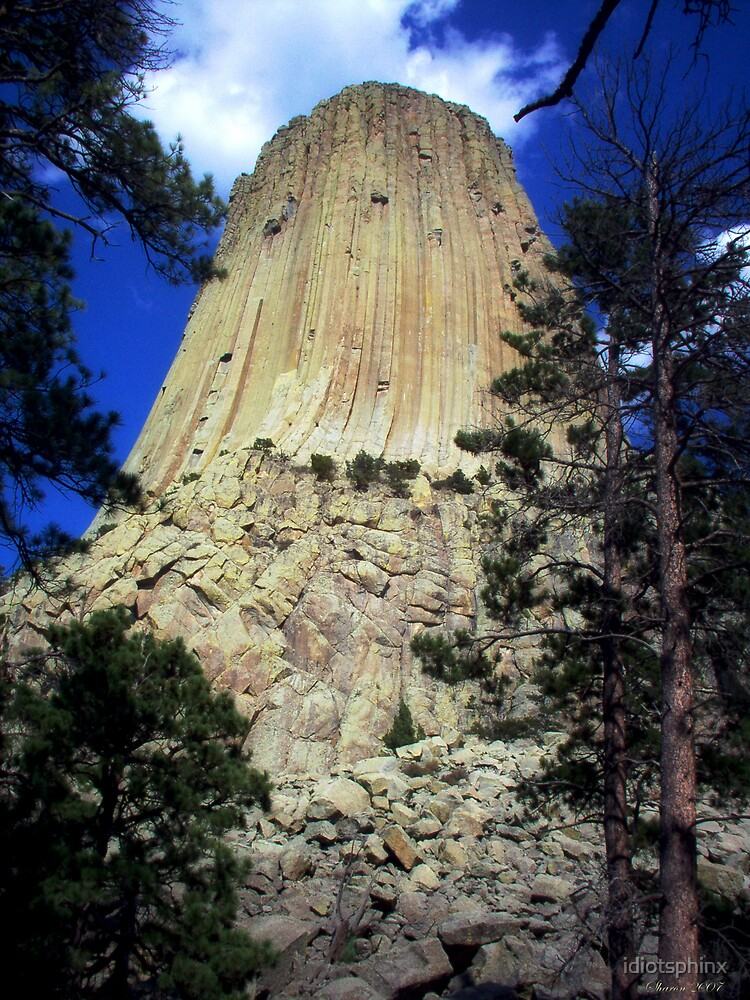 Devils Tower by idiotsphinx
