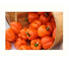 Basket of Red Bell Peppers Art Print