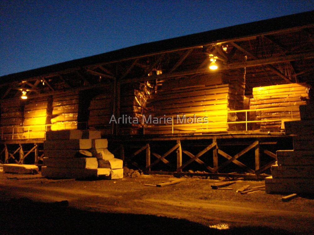 Lumber Yard At Twilight by Arlita Marie Moles