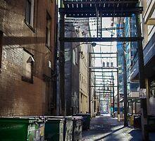 The Back Lane by Sheri Bawtinheimer