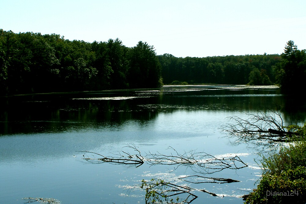 still water by Dianna124