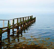 Beautiful seascape of a wooden footbridge by Ron Zmiri