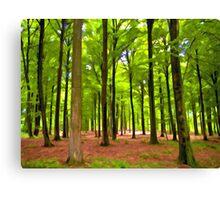 Beautiful lush Forest landscape Canvas Print