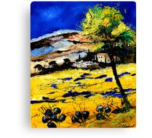 provence south of france 0507 Canvas Print