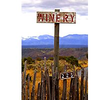 The winery Photographic Print
