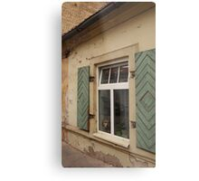 Dog is looking through a window of the house. Metal Print