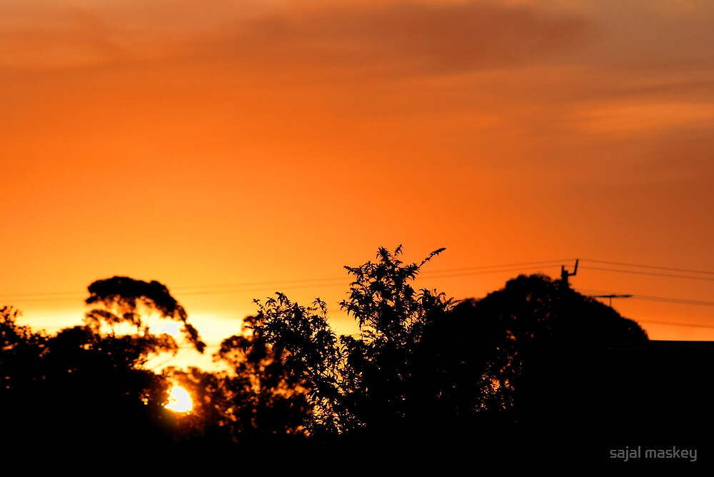 sunsetfromtree by sajal maskey