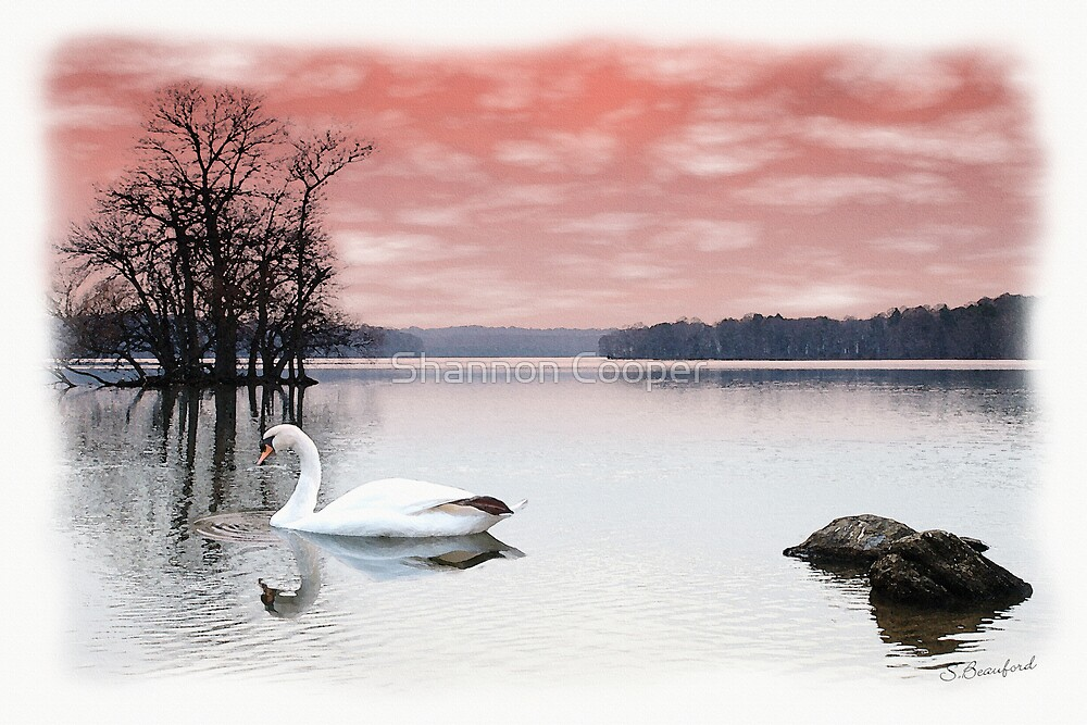 Swan Lake by Shannon Beauford