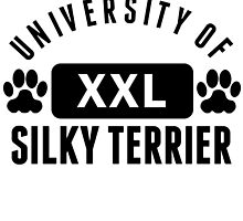 University Of Silky Terrier by kwg2200
