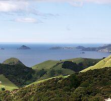 Cavalli Islands.........Islands in the sun...........! by Roy  Massicks